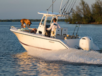 Profile shot of white C 238 running left with dog on bow