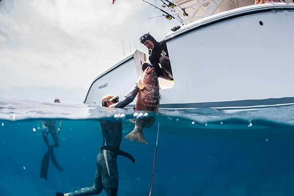 Diver handing large fish to another diver through S 408 dive door