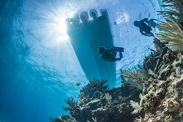 Looking up from under water at 3 divers with coral reef and under a S 408