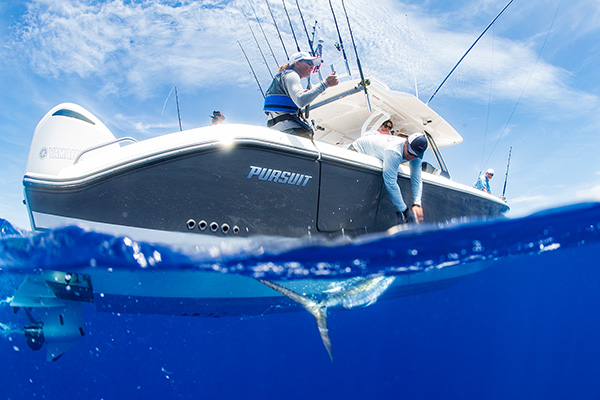 Water line profile view of man releasing marlin of side of S 368
