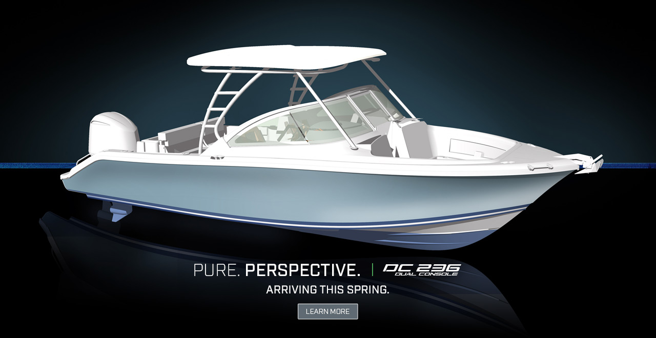 Dramatic rendering of the All New DC 236 Dual Console. Text over graphic. PURE. PERSPECTIVE. DC 236 Dual Console. Arriving Spring. Learn More.